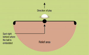 Diagram Illustrating Fre Relief for a ball Embedded in the General Area